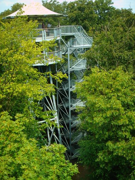 Baumkronenpfad im Nationalpark Hainich Dsc083105rlx