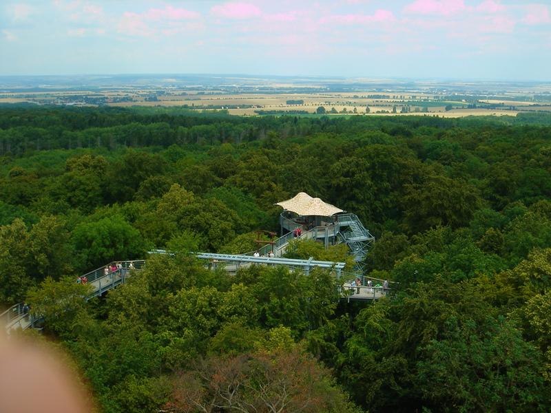 Baumkronenpfad im Nationalpark Hainich Dsc08317trk8