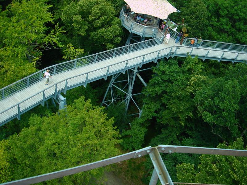 Baumkronenpfad im Nationalpark Hainich Dsc08318sv99