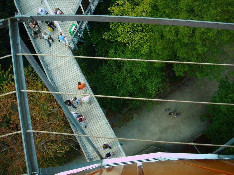 Baumkronenpfad im Nationalpark Hainich Dsc0831912y1