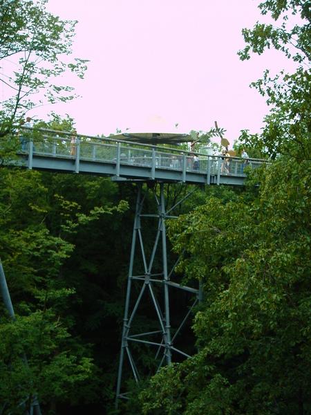 Baumkronenpfad im Nationalpark Hainich Dsc083240wgn
