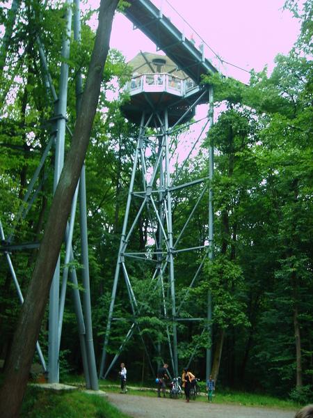 Baumkronenpfad im Nationalpark Hainich Dsc08325y0o1