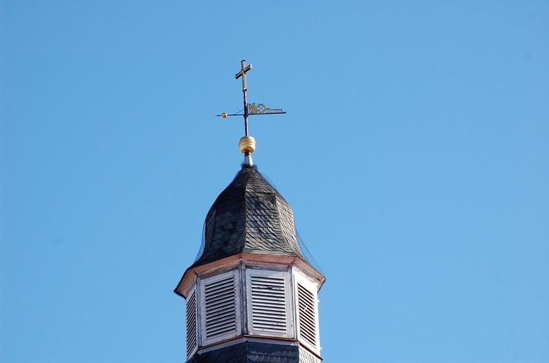 Sonntag 25.03.2012 Vogelhochzeit Dsc_2071c3ke5