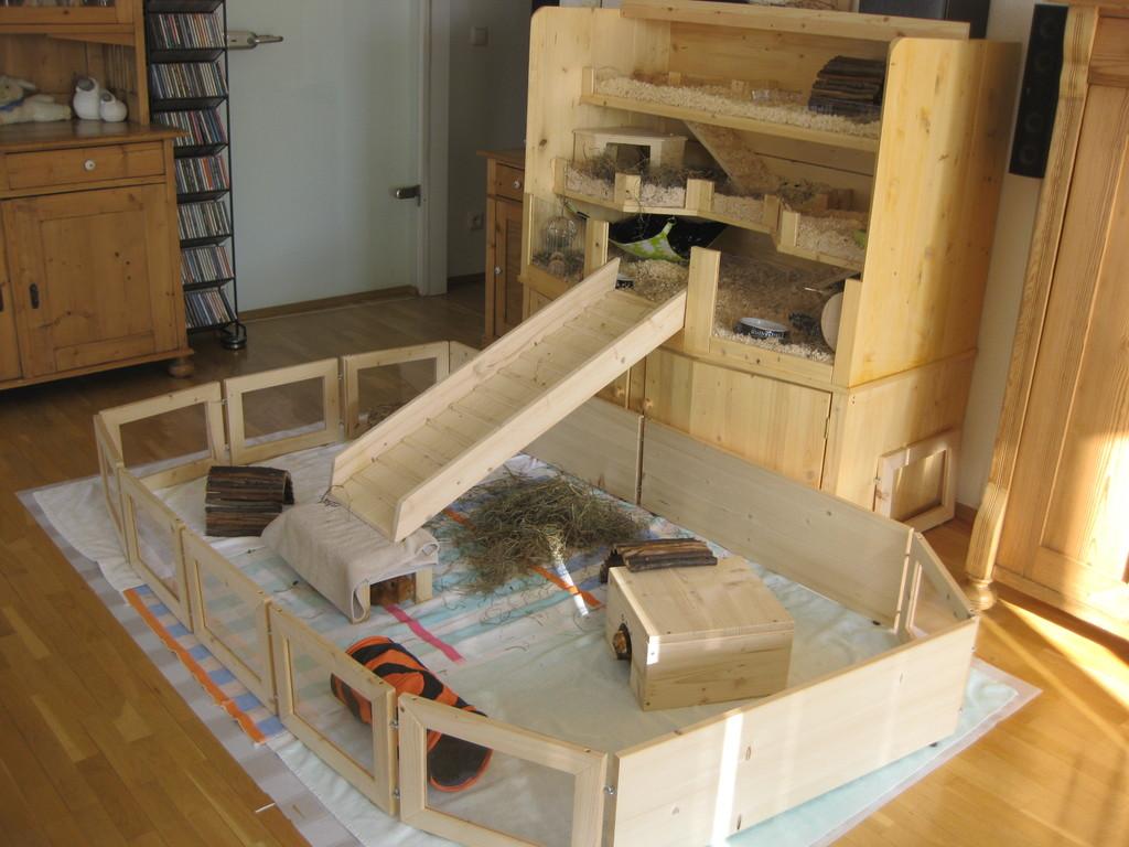 umzug vom kinderzimmer ins wohnzimmer meerschweinchen haltung seite 2. Black Bedroom Furniture Sets. Home Design Ideas