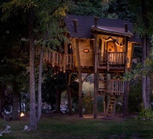 Domki na drzewie #2 32