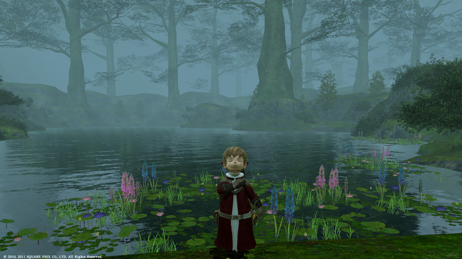 ffxivgame2011-03-2613-on76.jpg