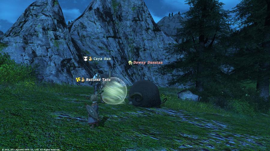 ffxivgame2011-04-1515-qr44.jpg