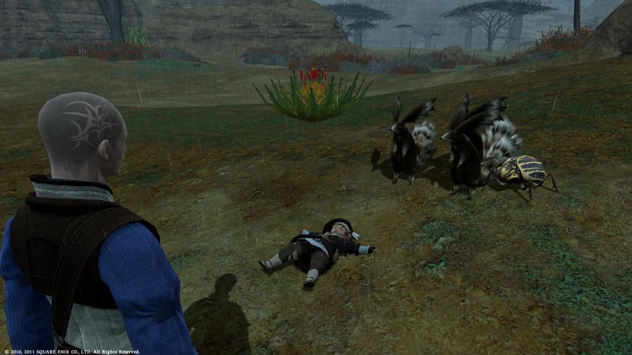 ffxivgame2011-06-0321-ntwe.jpg