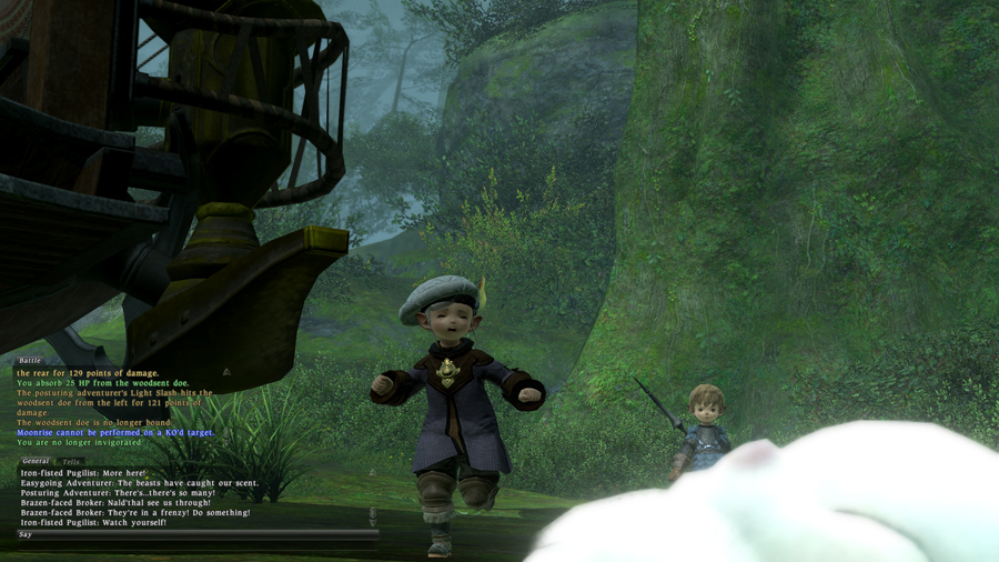 ffxivgame2011-07-0122-b800.jpg