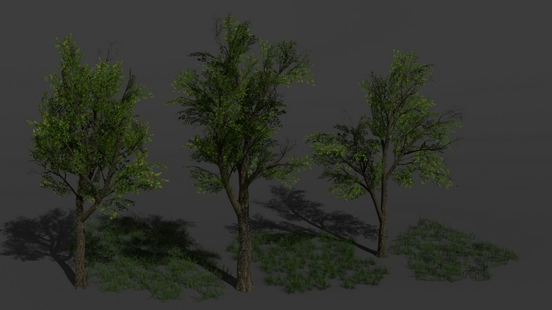 foliage_treesgrass__rmpu57.jpg