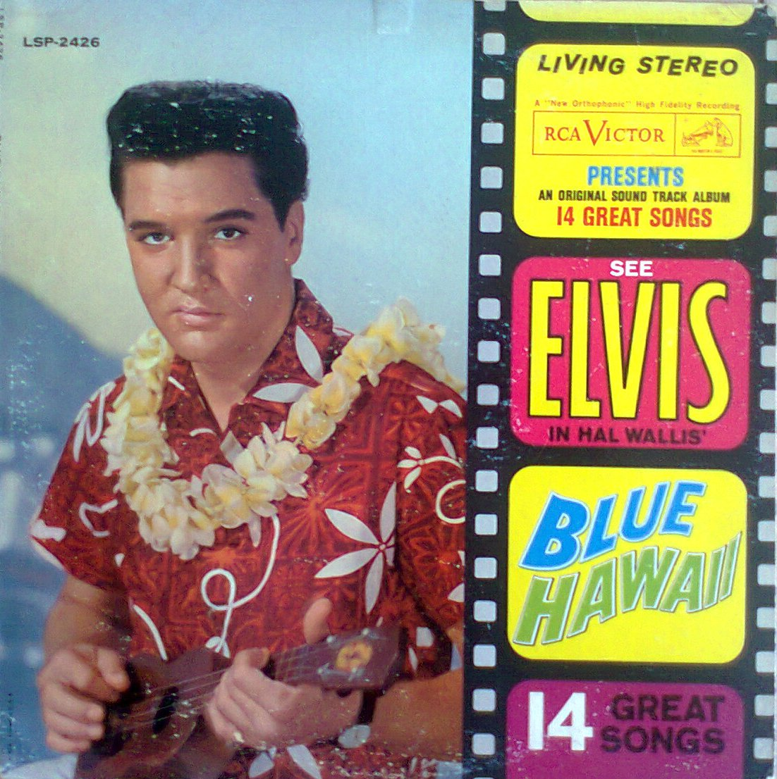 BLUE HAWAII Foto0251tbk18
