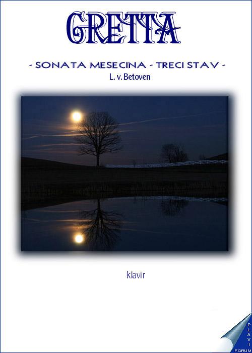 2 - NOVOGODISNJI KONCERT 2013. - KLASICNA MUZIKA G12-gretta-sonatameseznif8
