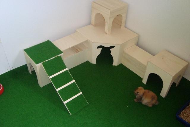 bilder eurer innengehege kaninchen forum by sweetrabbits made with forum101 by worldweb. Black Bedroom Furniture Sets. Home Design Ideas