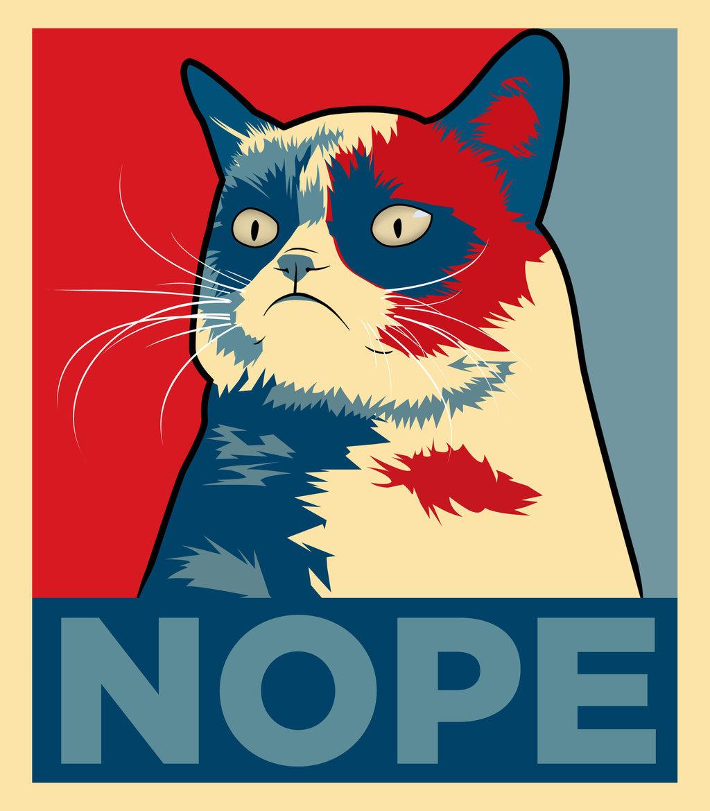 Adivina la imagen - Página 2 Grumpy_cat__nope_by_iyndt8