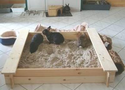 alles ber die artgerechte haltung von kaninchen besch ftigung. Black Bedroom Furniture Sets. Home Design Ideas