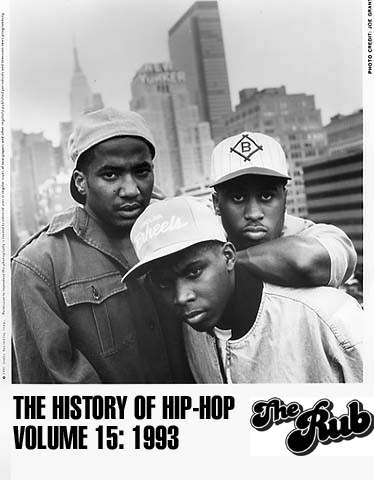 History of Hip-Hop Vol.15 1993 (Mixed by DJ Ayres)