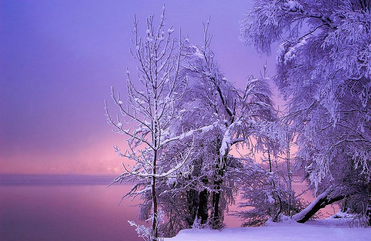 Urok zimy 5