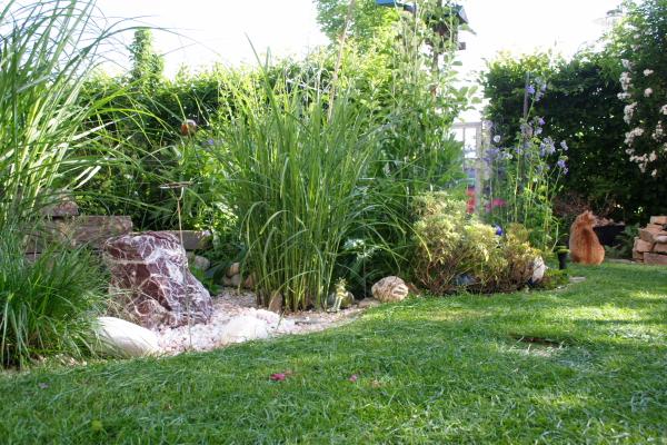 gartenjahr 2012 seite 56 plauderecke katzenforum mietzmietz das forum ber katzen. Black Bedroom Furniture Sets. Home Design Ideas
