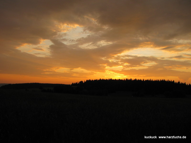 Sommerabend Img_4563p5nw