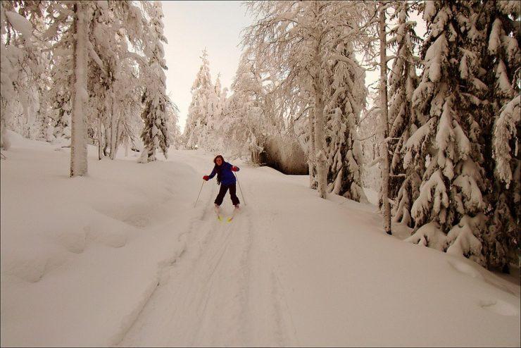 Zimowe krajobrazy 20