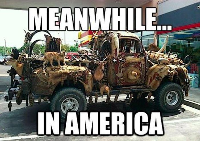 Tymczasem w USA 25