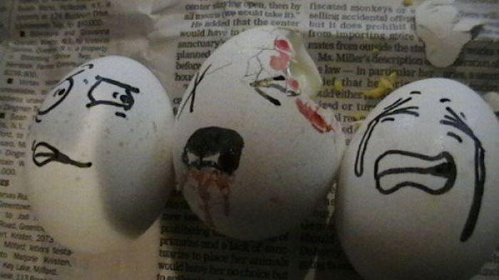 Sekretne życie jajek 39