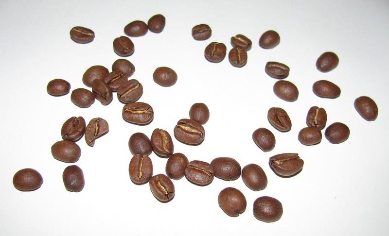 Guatemala Antigua von Kaffee-Timm Bohnen