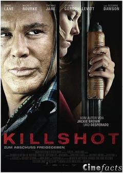 Killshot.2008.HDRip.MD.German.XviD-2Brothers