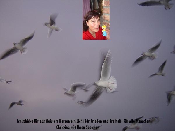 An den Beitrag angehängtes Bild: http://www.abload.de/img/kolumnew6a4a.jpg