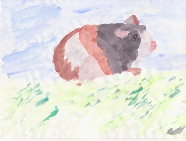 selbst gemalte bilder von unseren meerlis wie w r das meerschweinchen allgemeines seite 4. Black Bedroom Furniture Sets. Home Design Ideas