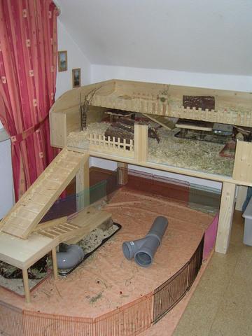 welche unterlage f r auslauf in der wohnung meerschweinchen haltung. Black Bedroom Furniture Sets. Home Design Ideas