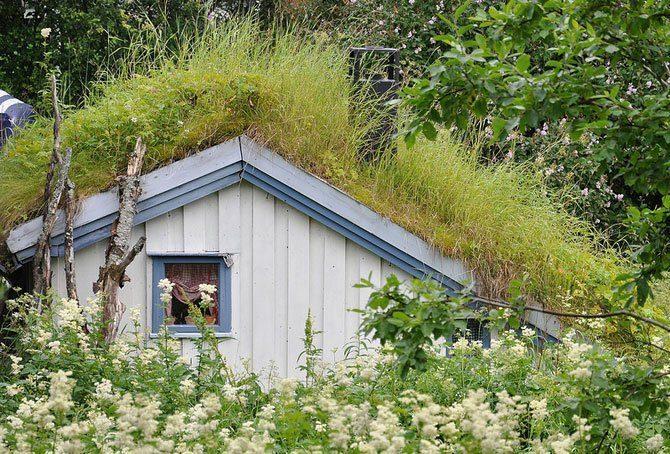 Zielone dachy w Norwegii #2 23
