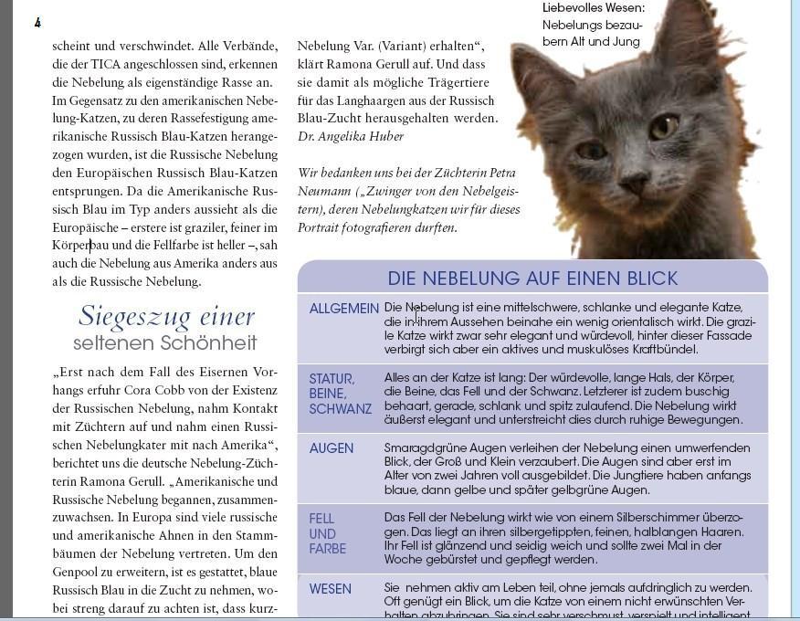 Geliebte Katze Nebtext40pc