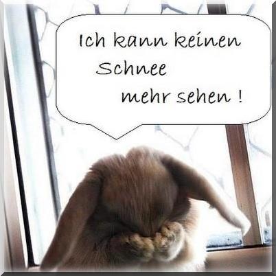 An den Beitrag angehängtes Bild: http://www.abload.de/img/ostern-schnee667tzxs.jpg