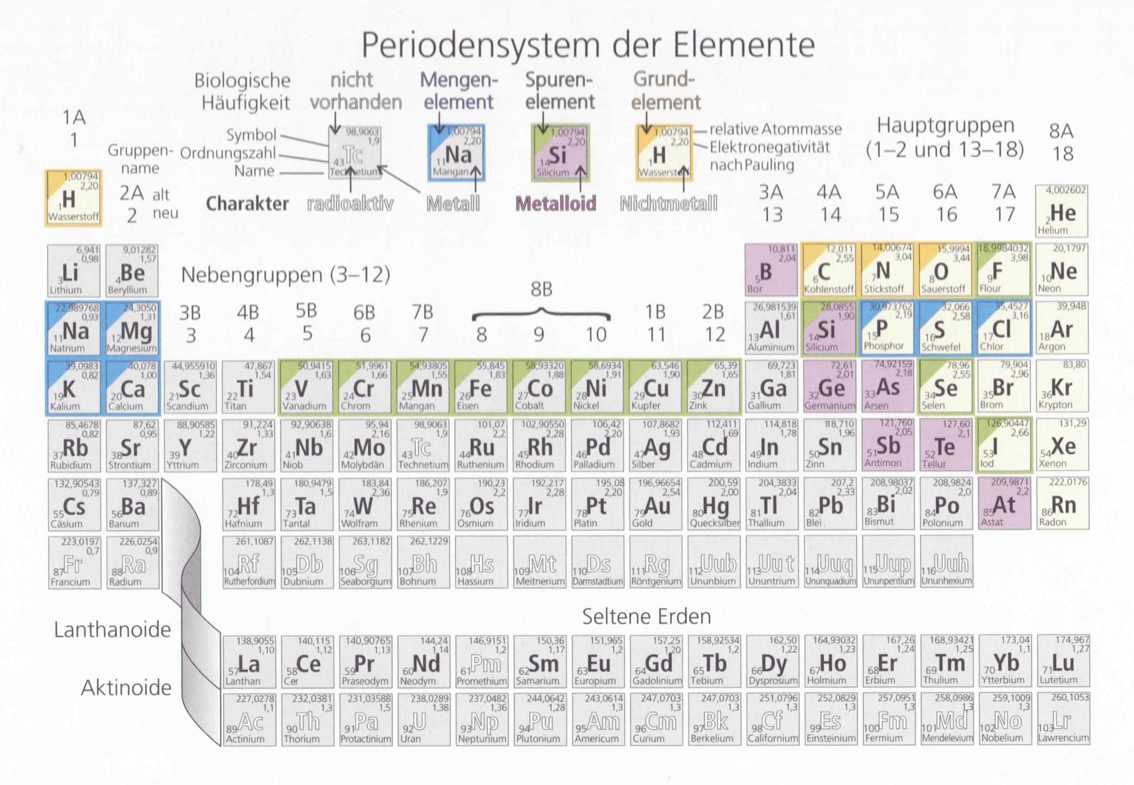 Tolle Anatomie Des Periodensystems Zeitgenössisch - Menschliche ...