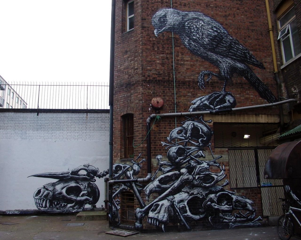 Street Art #7 6