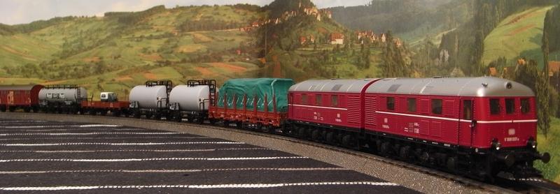 Zugbildung Güterzüge - gemischt oder einheitlich? Rimg0311.1w847