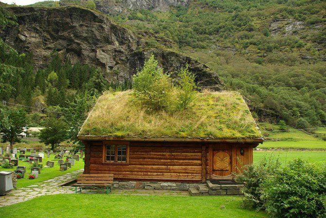 Zielone dachy w Norwegii #2 26