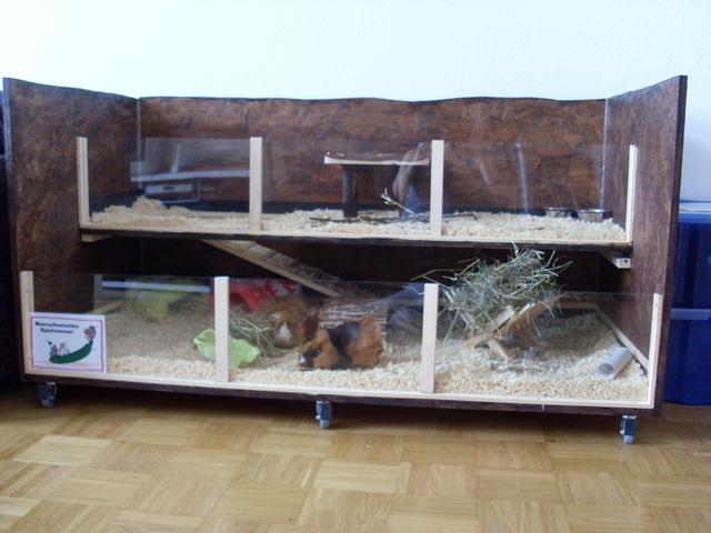 mein halbeigenbau ist fertig es gef llt meerschweinchen haltung. Black Bedroom Furniture Sets. Home Design Ideas