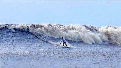 NEOBICNA PRIRODA Surfersybng