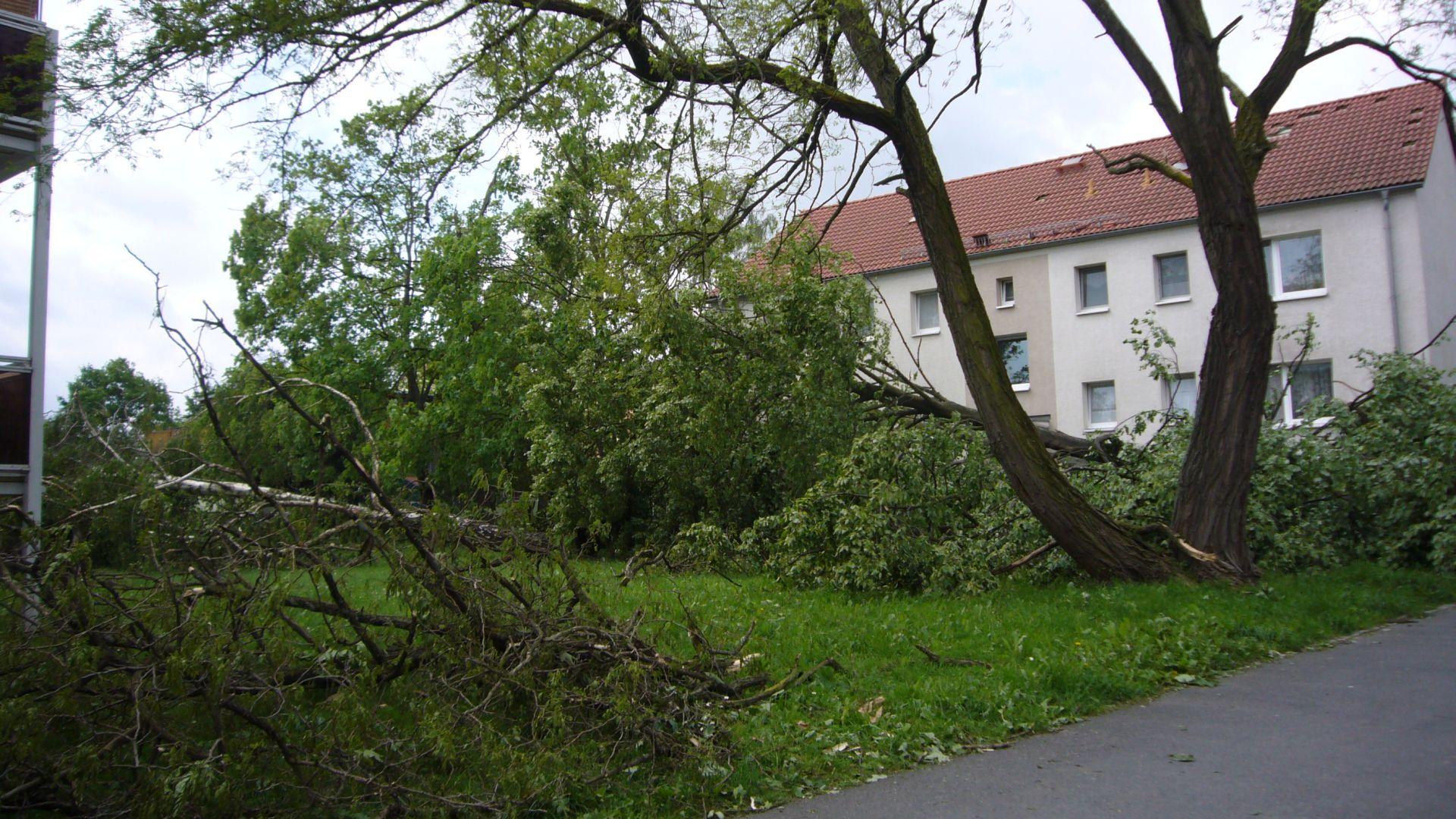 http://www.abload.de/img/tornadogrossenhain004uabr.jpg