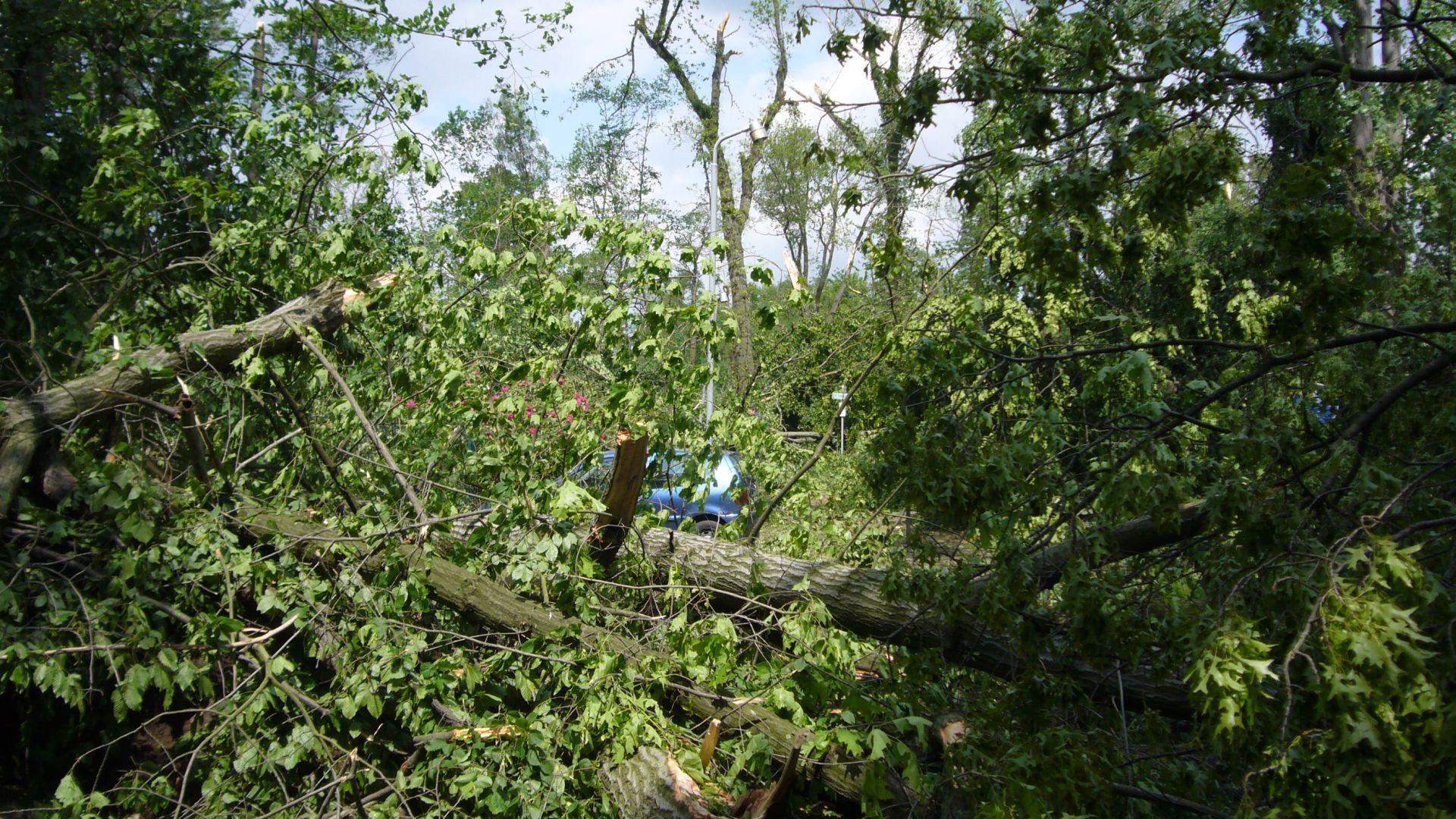 http://www.abload.de/img/tornadogrossenhain0136a7m.jpg