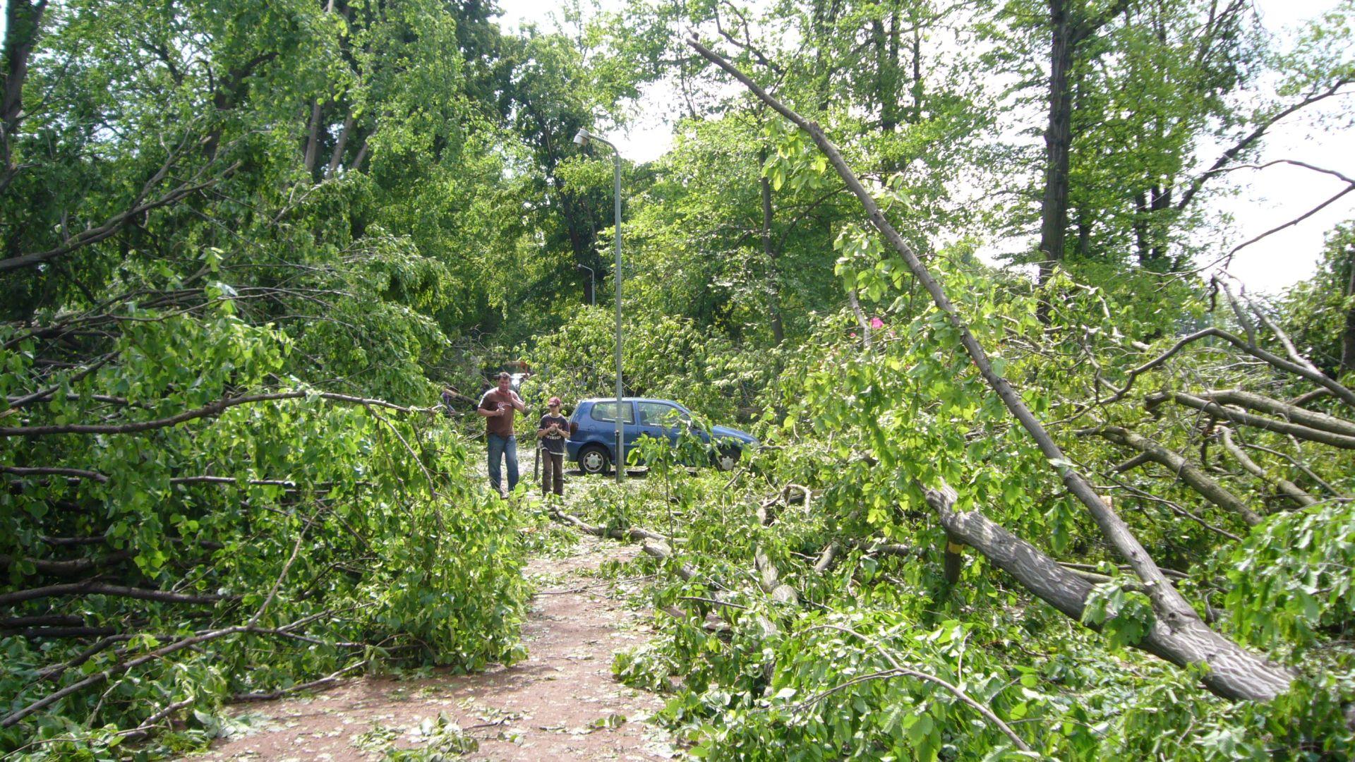 http://www.abload.de/img/tornadogrossenhain015kbt3.jpg
