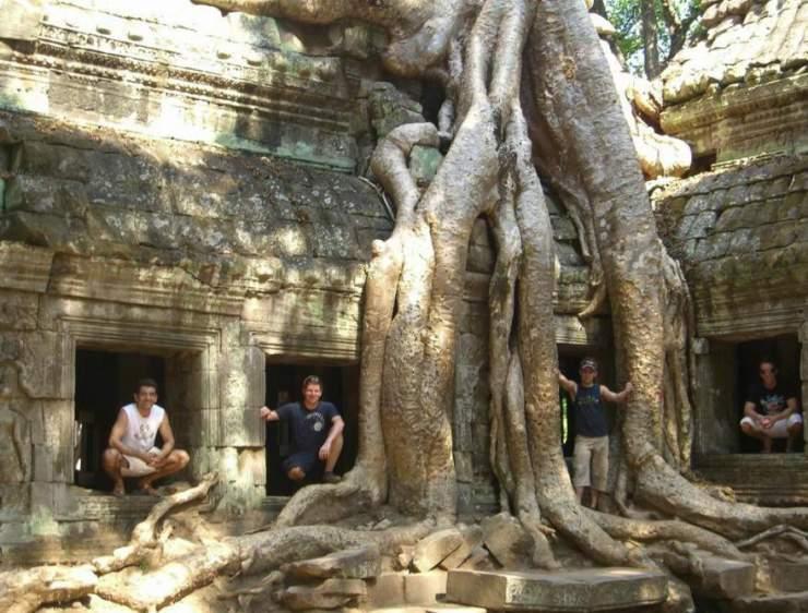 Najdziwniejsze drzewa świata 1