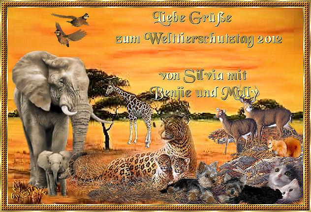 An den Beitrag angehängtes Bild: http://www.abload.de/img/welttierschutz1i1qqj.jpg
