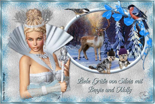 An den Beitrag angehängtes Bild: http://www.abload.de/img/winterbild1jjuow.jpg