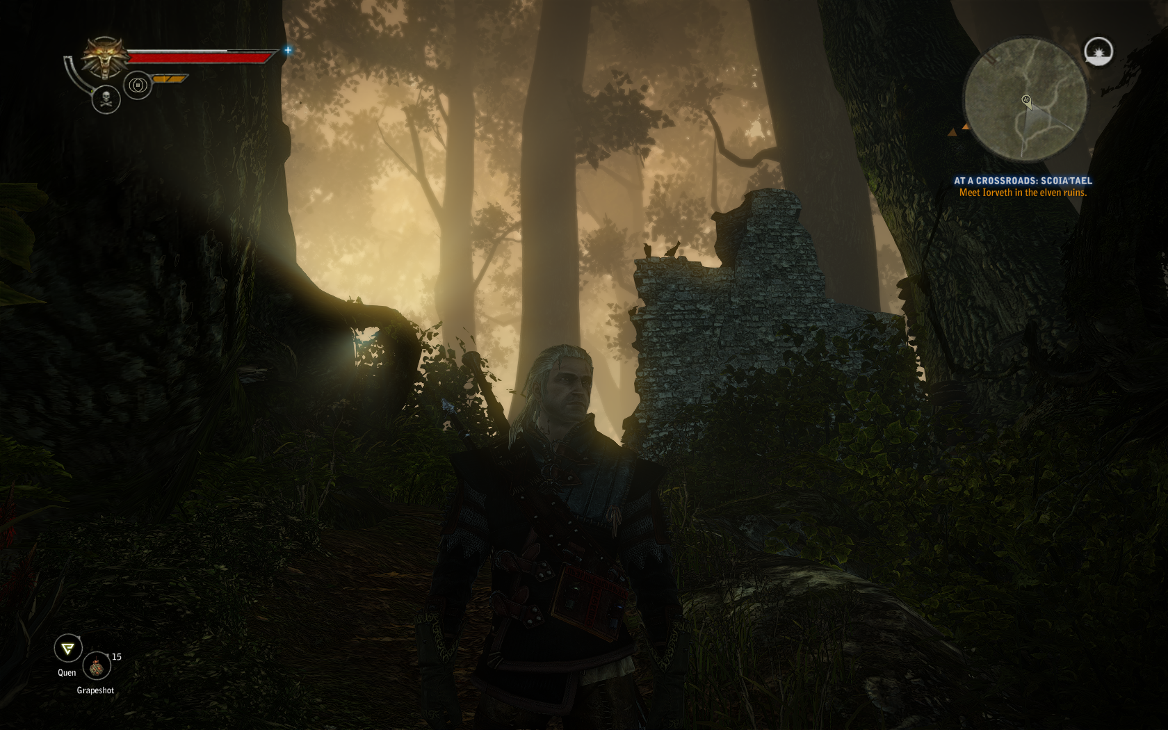 witcher22012-04-2801-ljqtl.png