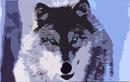 Avatar von Wolfman