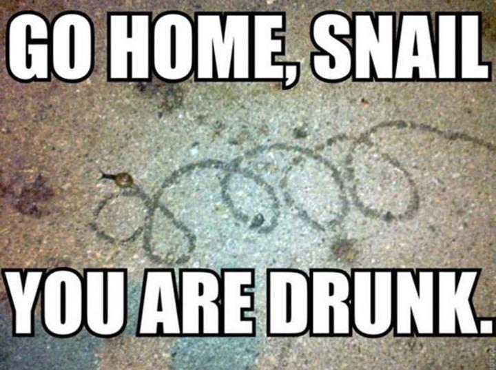 Wracaj do domu, jesteś pijany 22