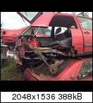 415711_40508720622512x1jm1.jpg